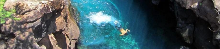 naturalswimmingpool